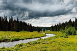 Prodáváte pozemek na území národního parku? Pozor na předkupní právo!