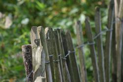 V kostce: připomeňte si zákony týkající se hranic pozemků