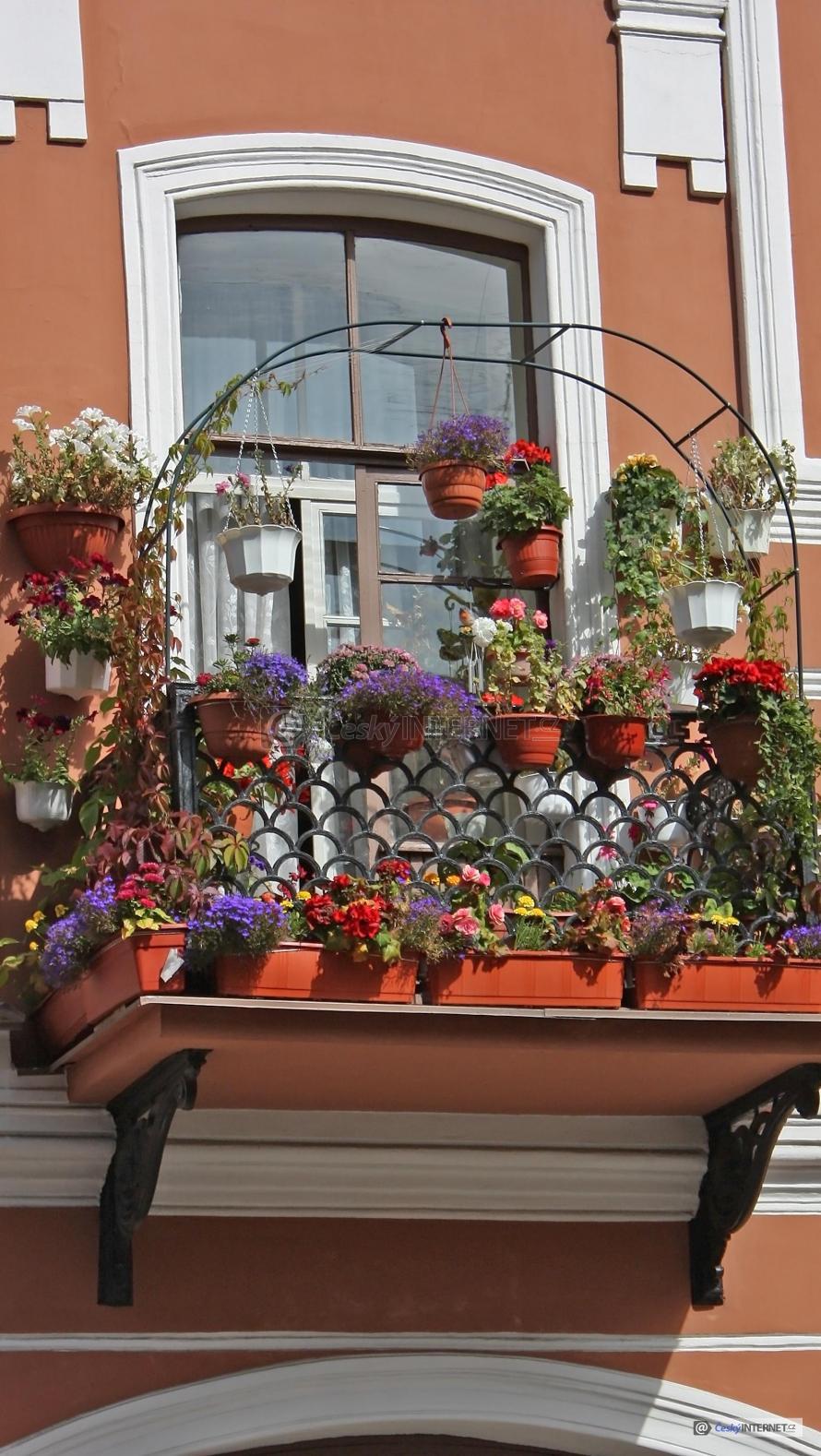 Balkon s květinymi - detail.
