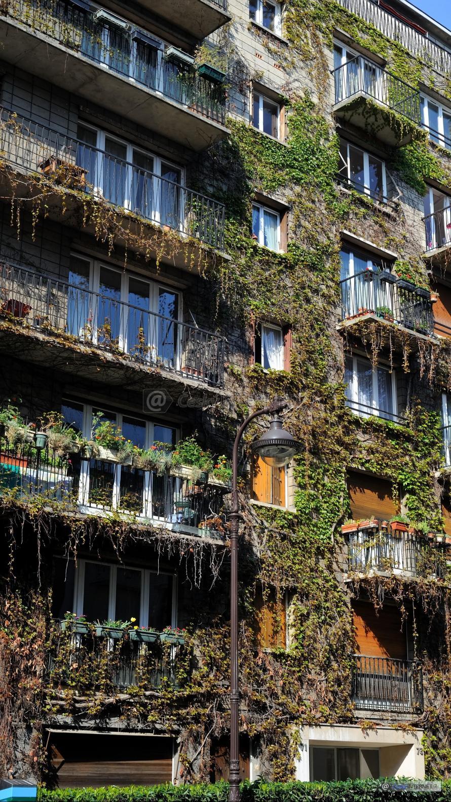 Bytový dům, fasáda porostlá rostlinami.