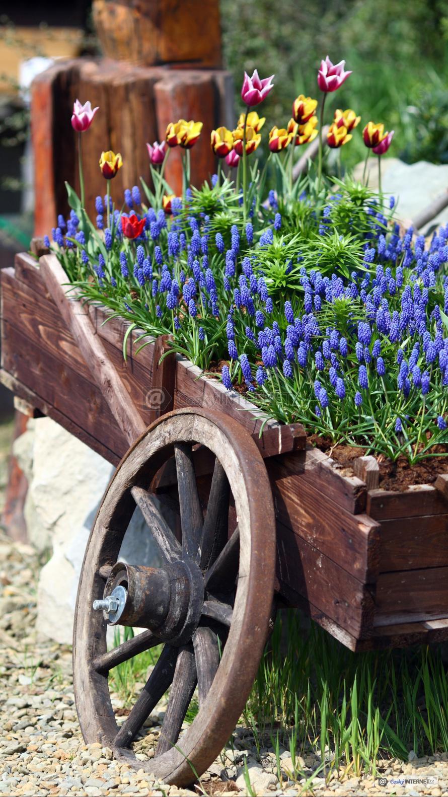 Rozkvetlé květiny v dřevěném kolečku.