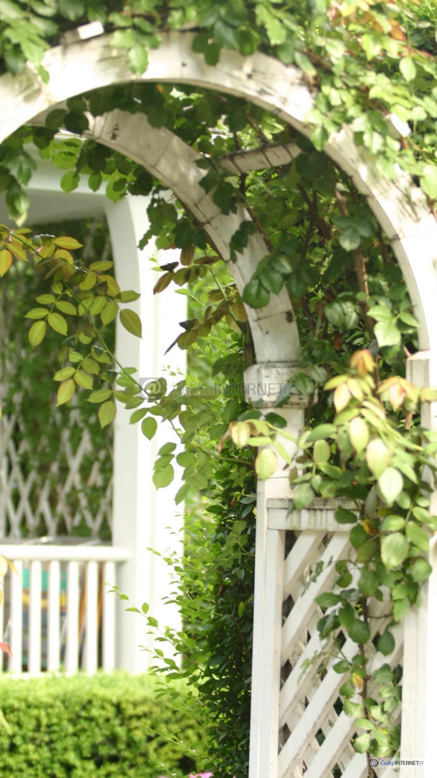Obloukový vchod v plotu do jiné části zahrady.