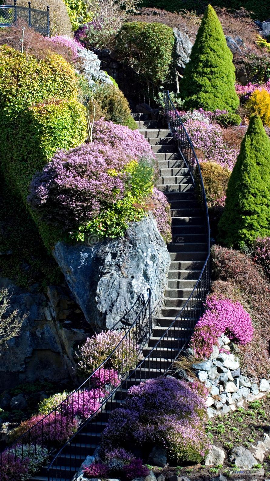 schodiště v zahradě.