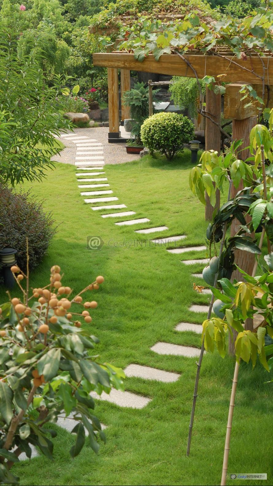 Zahrada s pěšinou.