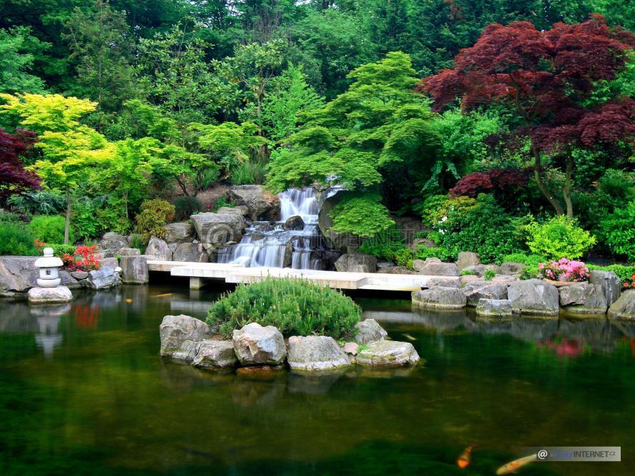 Zahrada s vodní plochou, vodopádem a uměním.