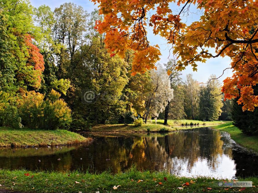Podzimně zbarvené listí stromů kolem vodní plochy.