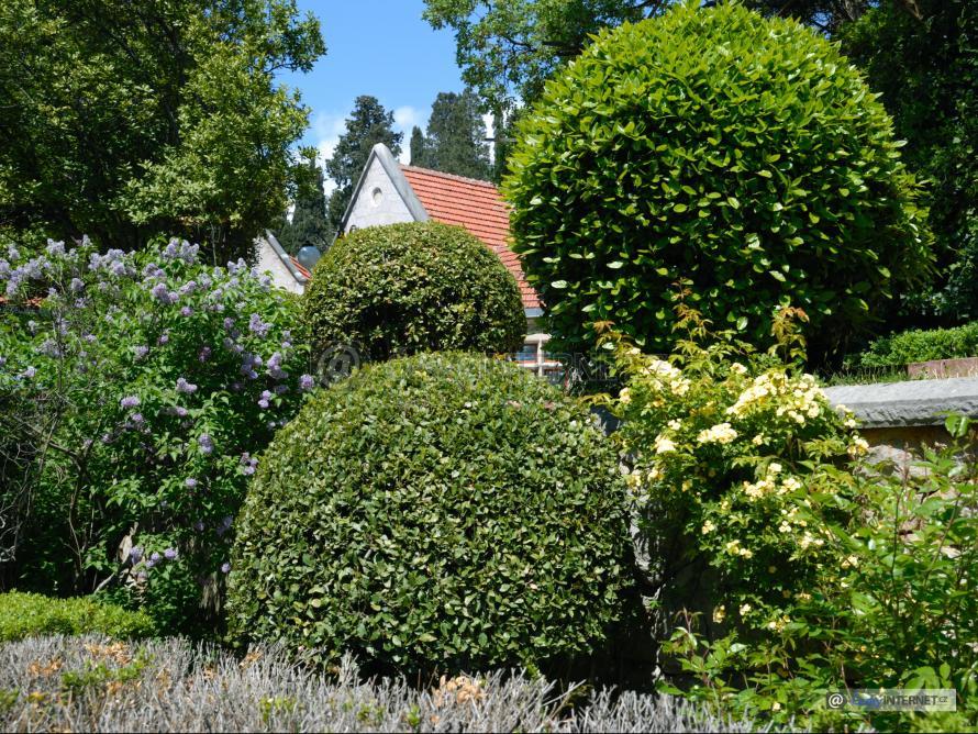 Detail okrasné zahrady.