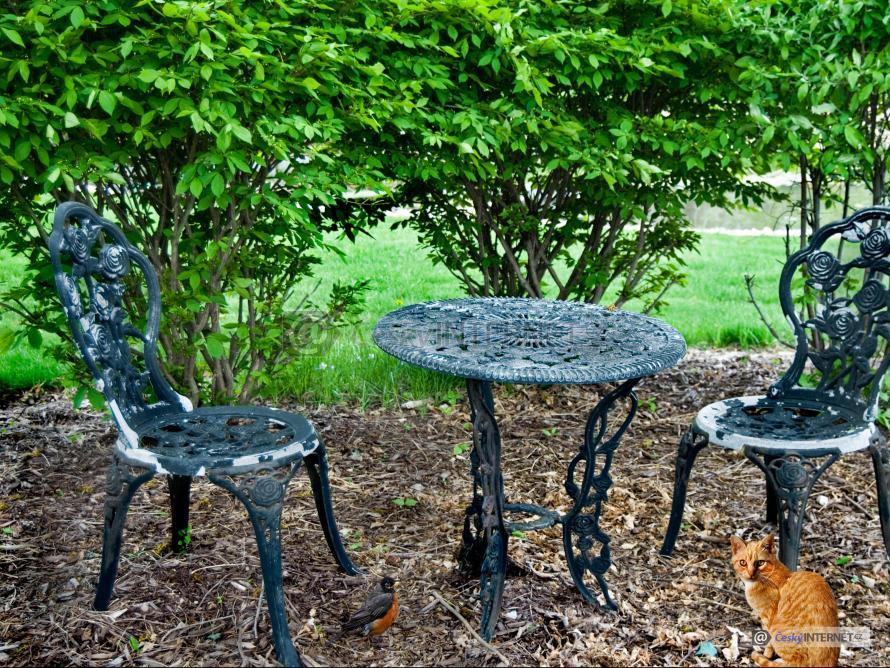 Aranž v okrasné zahradě, zahradní nábytek kovový