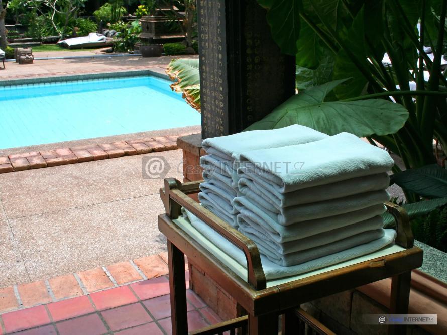 Bazén v zahradě.