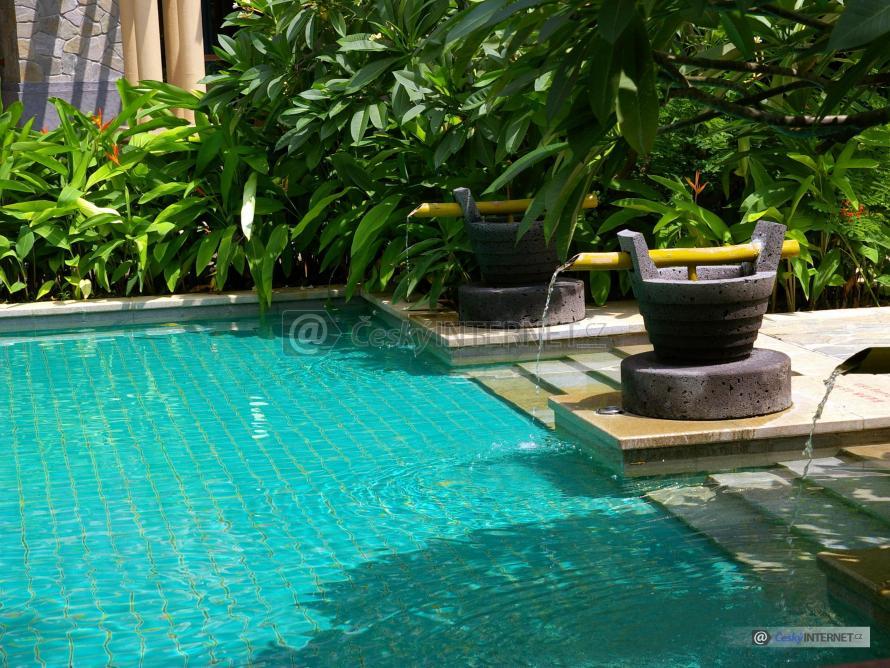 Bazén v exotické zahradě.
