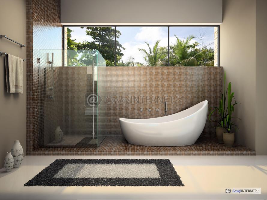 Moderní koupelna s vanou a sprchou.
