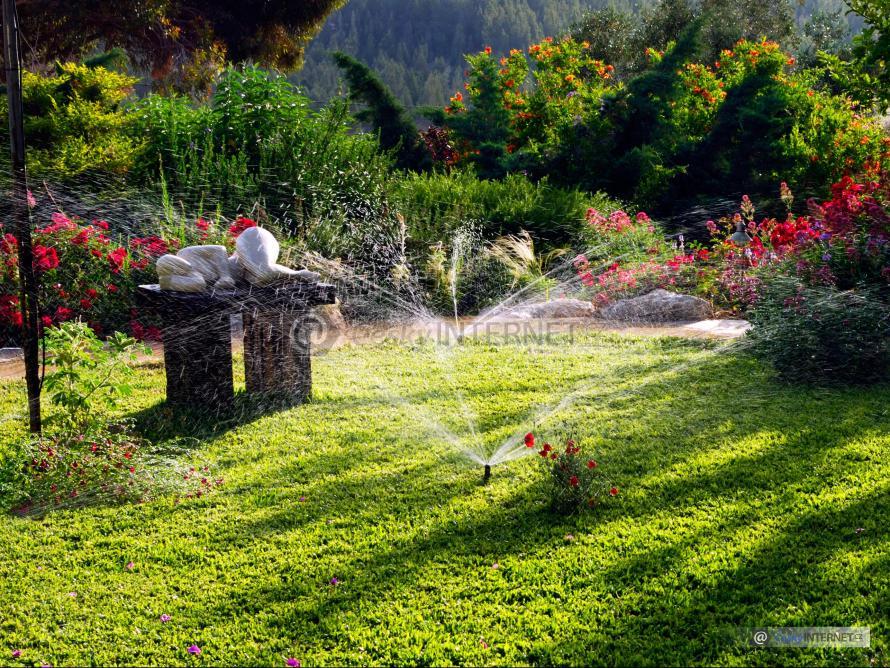 Zavlažování zahrady.
