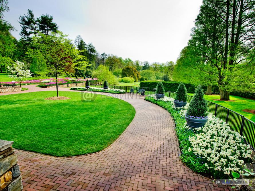 Park s rozkvetlými květinami.
