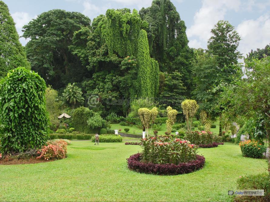 Exotická zahrada.