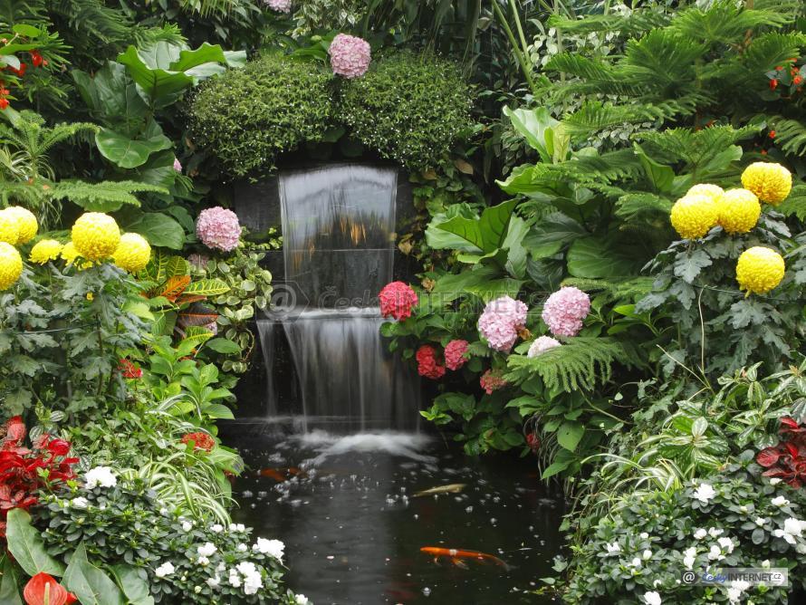 Zahrada s drobnými vodopády.