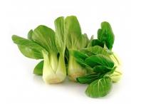 Rostlina | Brassica rapa var.chinensis, Čínské zelí